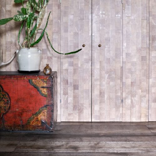 Oak magma mayon dark textured floor with engrain clad built in cupboard and antique chest with cactus