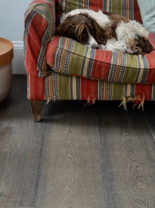 Worn sofa with sleeping dog on dark oak floor landmark chartwell